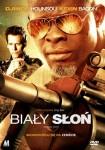 Bialy-slon-n36347.jpg