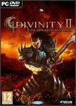 Divinity-2-Flames-of-Vengeance-n29239.jp