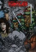 Teenage Mutant Ninja Turtles. The Ultimate Collection #1