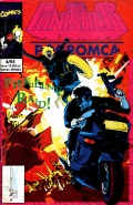 The Punisher #31 (4/1993)