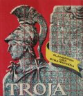 Troja-n7001.jpg