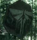 Zapowiedziano kontynuację The Last of Us